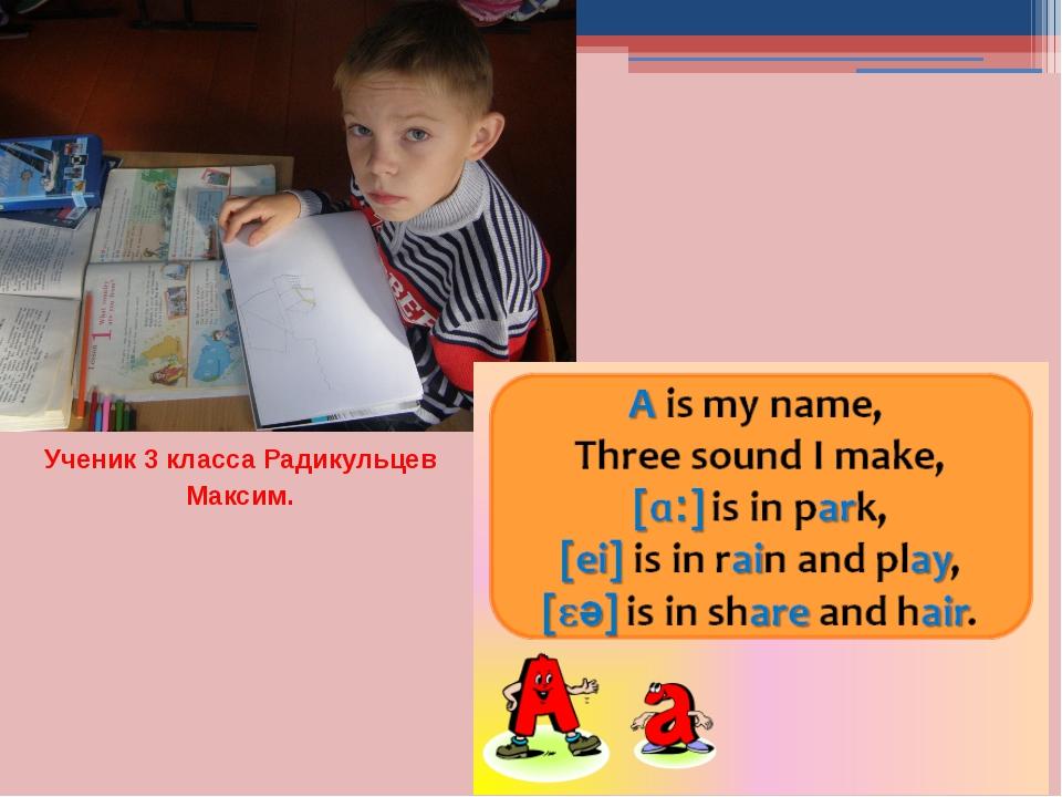 Ученик 3 класса Радикульцев Максим.