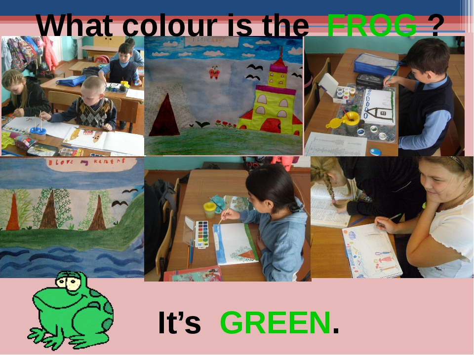 What colour is the FROG ? It's GREEN.