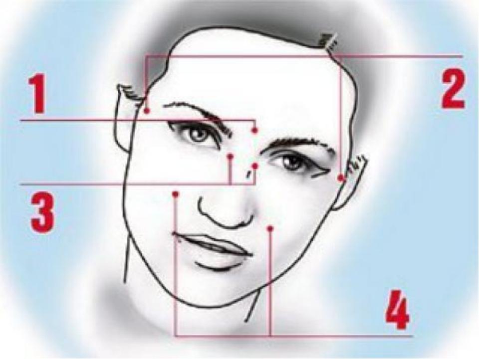 Строение кожи. 1 слой - наружная оболочка (предохраняет кожу от повреждений)...