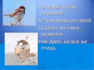 В серой шубке перьевой И в морозы он герой Скачет на снегу, резвится Не орел,