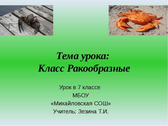 Infourok.ru видеоуроки по биологии 7 класс