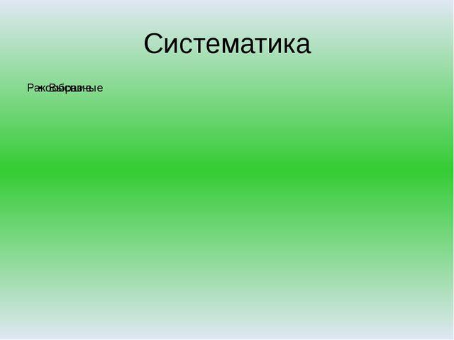 Систематика