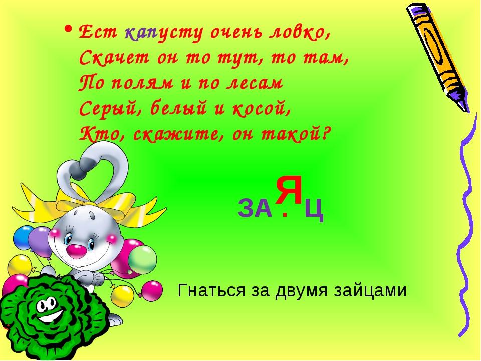 ЗА . Ц Я Ест капусту очень ловко, Скачет он то тут, то там, По полям и по лес...