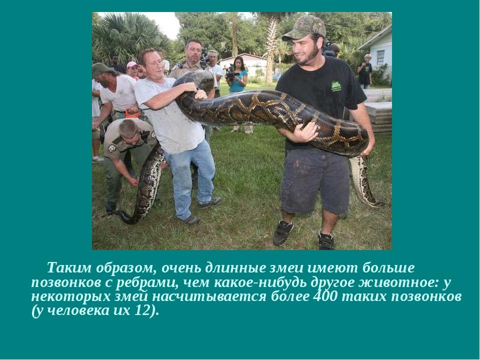 Таким образом, очень длинные змеи имеют больше позвонков с ребрами, чем како...