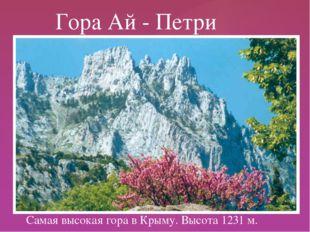 Самая высокая гора в Крыму. Высота 1231 м. Гора Ай - Петри {
