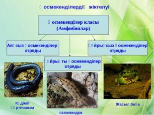 Қосмекенділер класы (Амфибиялар) Аяқсыз қосмекенділер отряды Құйрықты қосмеке