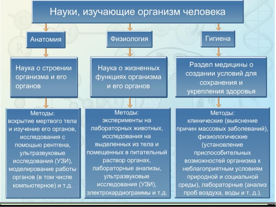 Наука изучающая отношения связанные с производством