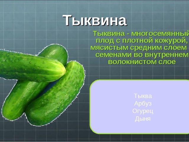 Тыквина Тыквина - многосемянный плод с плотной кожурой, мясистым средним слое...