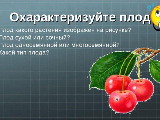Охарактеризуйте плод Плод какого растения изображён на рисунке? Плод сухой ил...