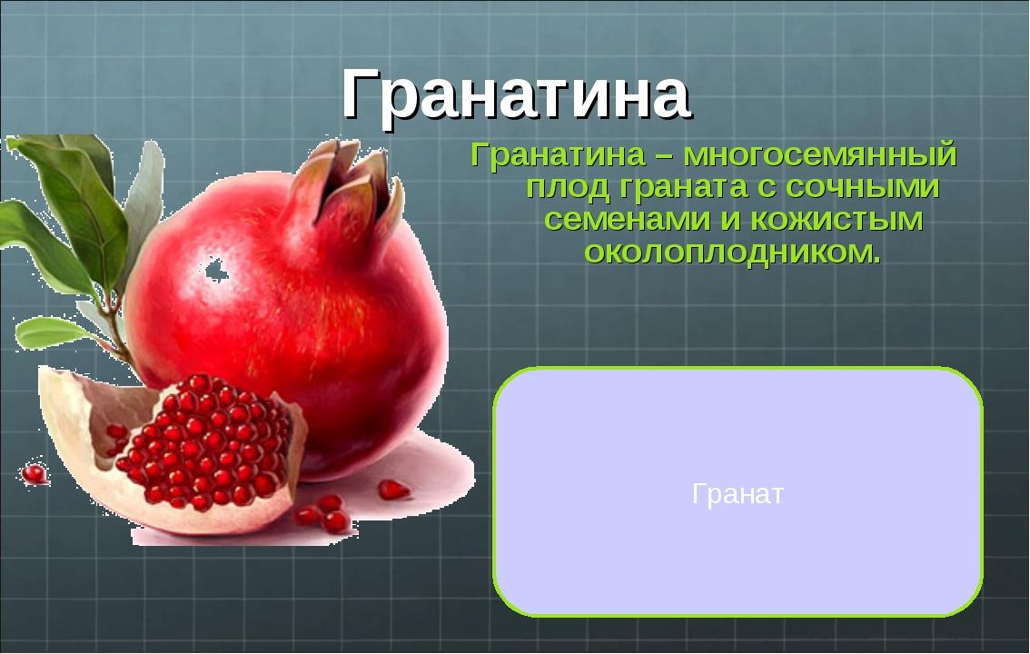 Гранатина Гранатина – многосемянный плод граната с сочными семенами и кожисты...