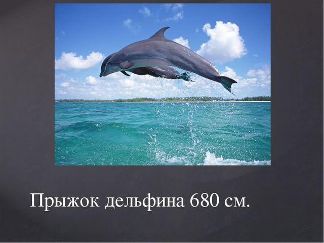Прыжок дельфина 680 см.