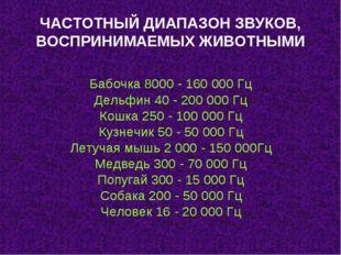 ЧАСТОТНЫЙ ДИАПАЗОН ЗВУКОВ, ВОСПРИНИМАЕМЫХ ЖИВОТНЫМИ Бабочка 8000 - 160 000 Гц