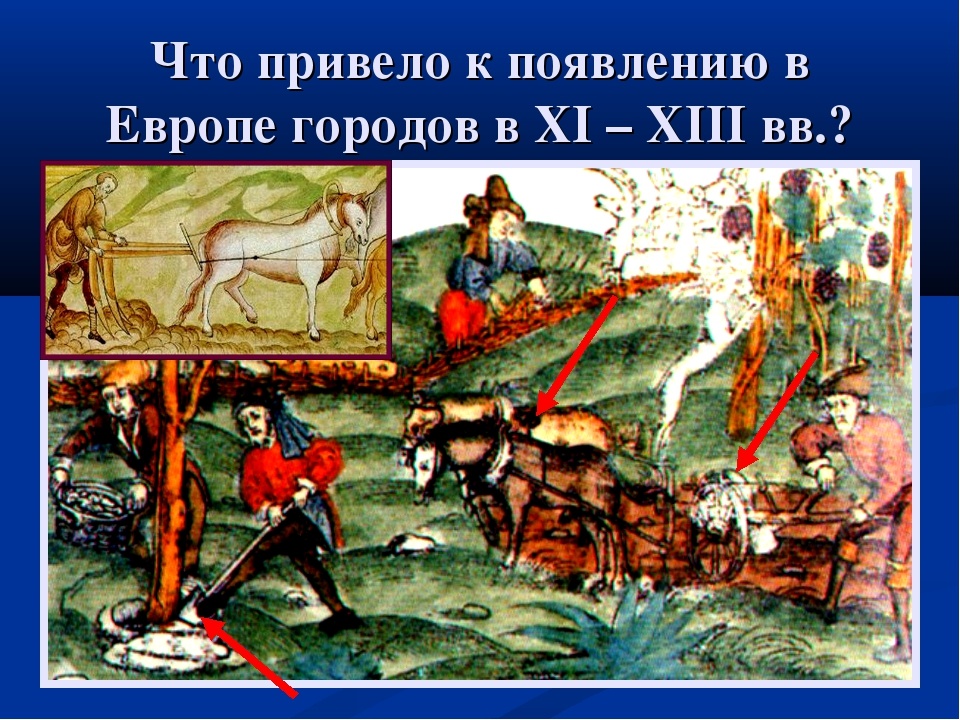 Что привело к появлению в Европе городов в XI – XIII вв.?