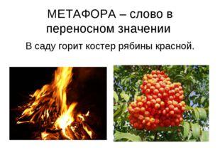 МЕТАФОРА – слово в переносном значении В саду горит костер рябины красной.