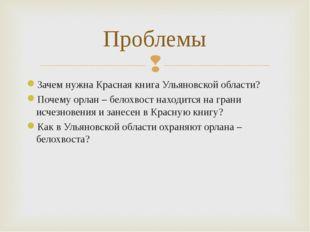 Зачем нужна Красная книга Ульяновской области? Почему орлан – белохвост наход