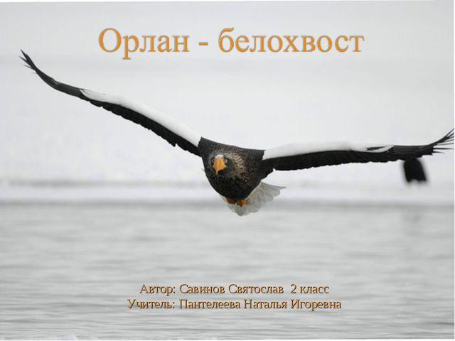 Автор: Савинов Святослав 2 класс Учитель: Пантелеева Наталья Игоревна
