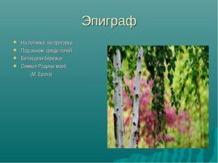 Эпиграф На полянке, на пригорке, Под окном, среди полей Белокурая березка- Си