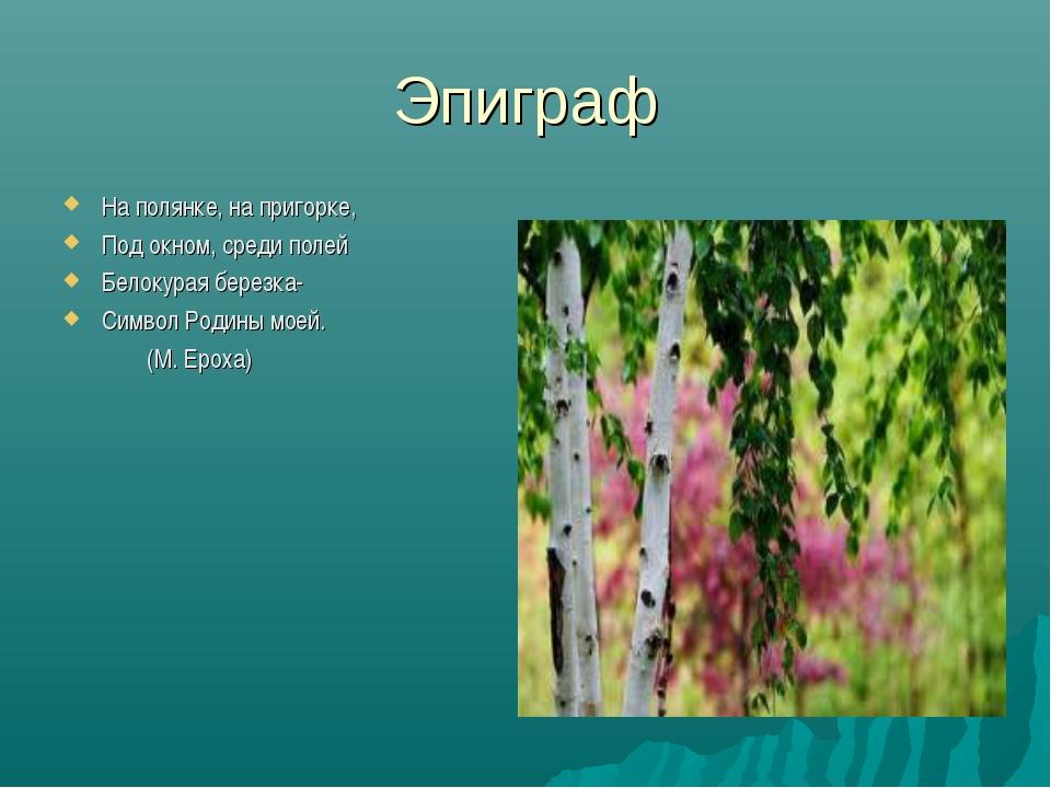 Эпиграф На полянке, на пригорке, Под окном, среди полей Белокурая березка- Си...