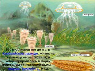 530 миллионов лет до н.э, вКембрийском периоде. Жизнь на суше еще отсутство