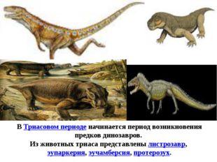 ВТриасовом периоденачинается период возникновения предков динозавров. Из жи