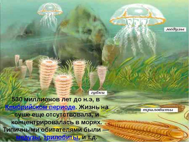 530 миллионов лет до н.э, вКембрийском периоде. Жизнь на суше еще отсутство...