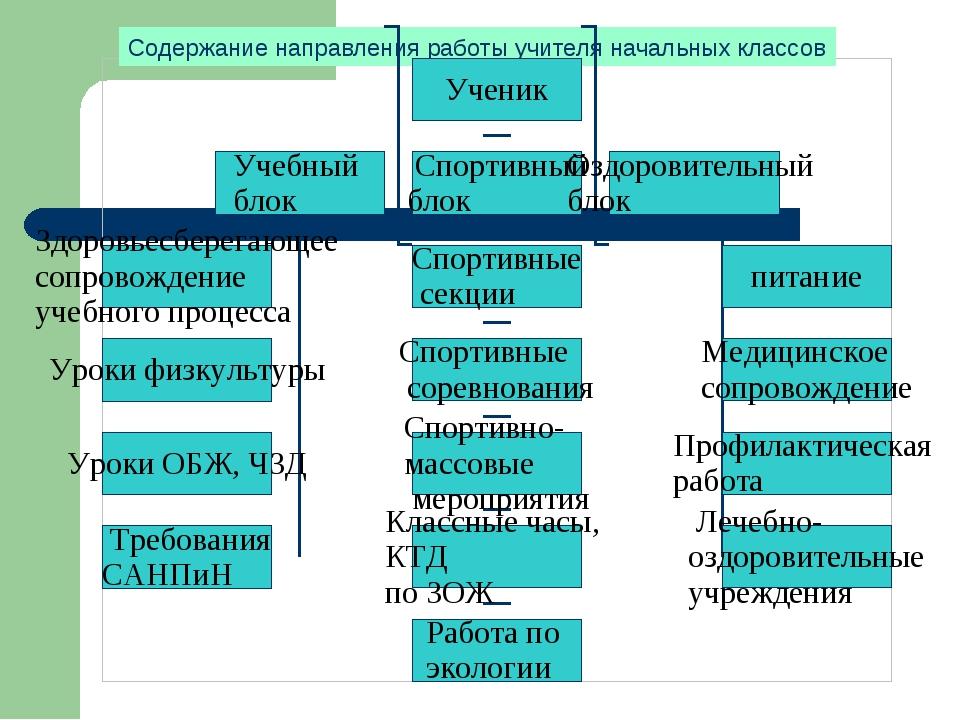 Данилова Надя О науке экологии мы узнали на уроках азбуки и окружающего мира....