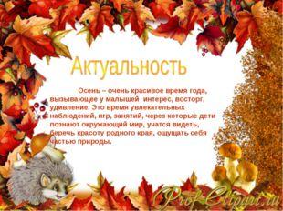 Осень – очень красивое время года, вызывающее у малышей интерес, восторг, уд