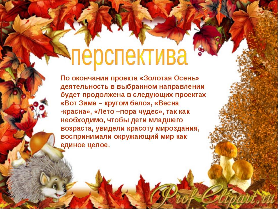 По окончании проекта «Золотая Осень» деятельность в выбранном направлении буд...