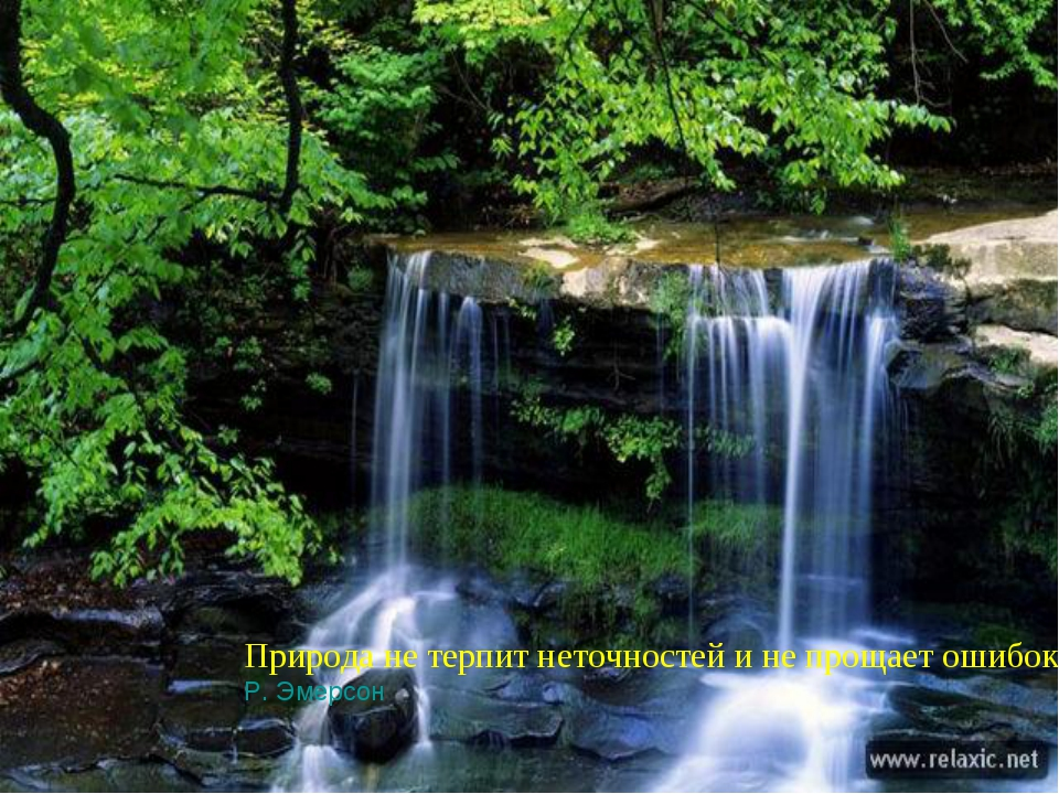 Природа не терпит неточностей и не прощает ошибок. Р. Эмерсон