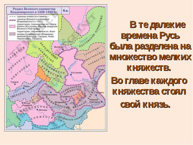 В те далекие времена Русь была разделена на множество мелких княжеств. Во гл...