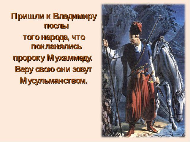 Пришли к Владимиру послы того народа, что покланялись пророку Мухаммеду. Веру...