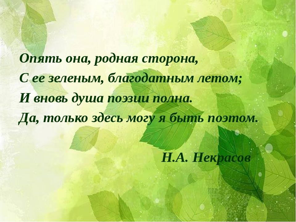Опять она, родная сторона, С ее зеленым, благодатным летом; И вновь душа поэз...