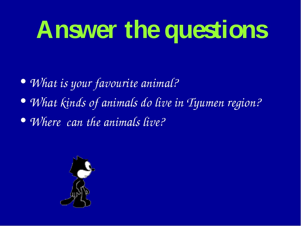 Answer the questions What is your favourite animal? What kinds of animals do...