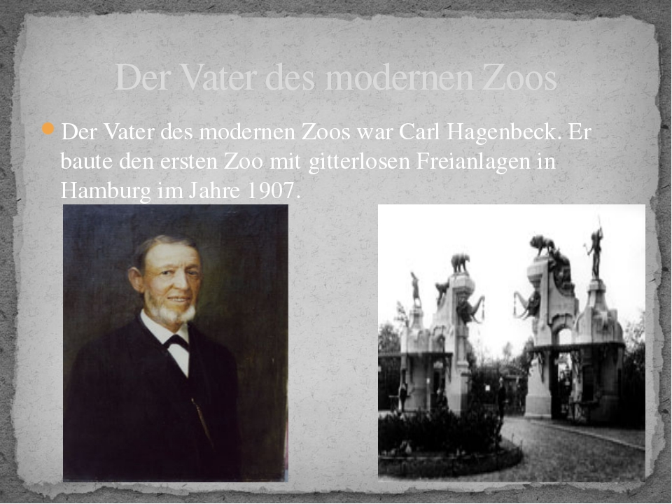 Der Vater des modernen Zoos war Carl Hagenbeck. Er baute den ersten Zoo mit g...