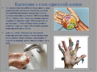 Бактерии в повседневной жизни По данным южнокорейского Бюро защиты прав потре