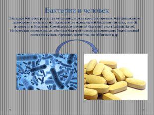 Бактерии и человек Благодаря быстрому росту и размножению, а также простоте с