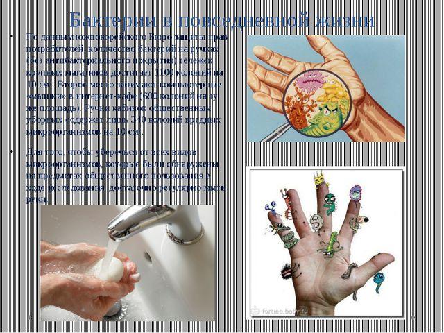 Бактерии в повседневной жизни По данным южнокорейского Бюро защиты прав потре...