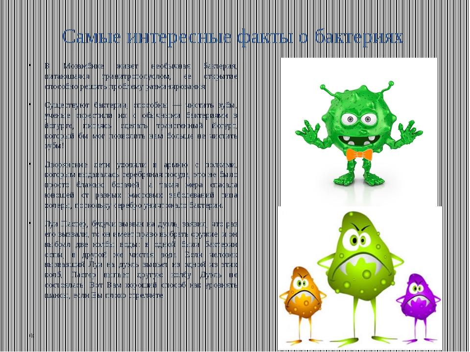Самые интересные факты о бактериях В Мозамбике живет необычная бактерия, пита...