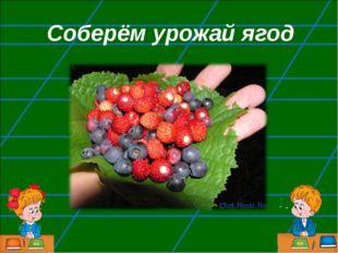 Соберём урожай ягод