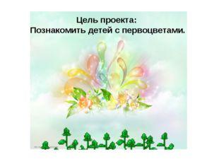 Цель проекта: Познакомить детей с первоцветами.