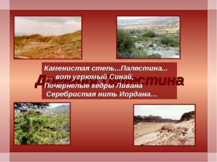 Древняя Палестина Каменистая степь...Палестина... … вот угрюмый Синай, Почерн