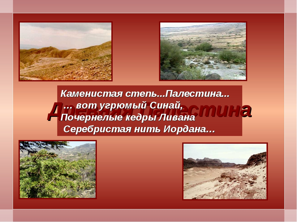 Древняя Палестина Каменистая степь...Палестина... … вот угрюмый Синай, Почерн...