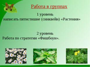 Работа в группах 1 уровень написать пятистишие (синквейн) «Растения» 2 уровен