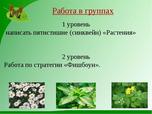 Работа в группах 1 уровень написать пятистишие (синквейн) «Растения» 2 уровен...
