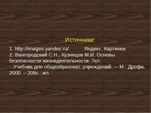Источники: 1. http://images.yandex.ru/ Яндекс. Картинки. 2. Вангородский С.Н.
