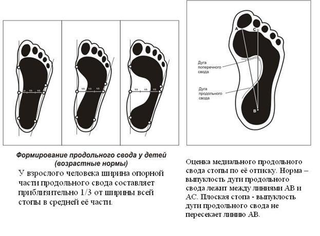 http://www.bestreferat.ru/images/paper/83/98/7239883.jpeg