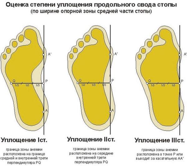 http://www.bestreferat.ru/images/paper/82/98/7239882.jpeg