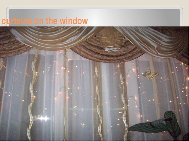 curtains on the window