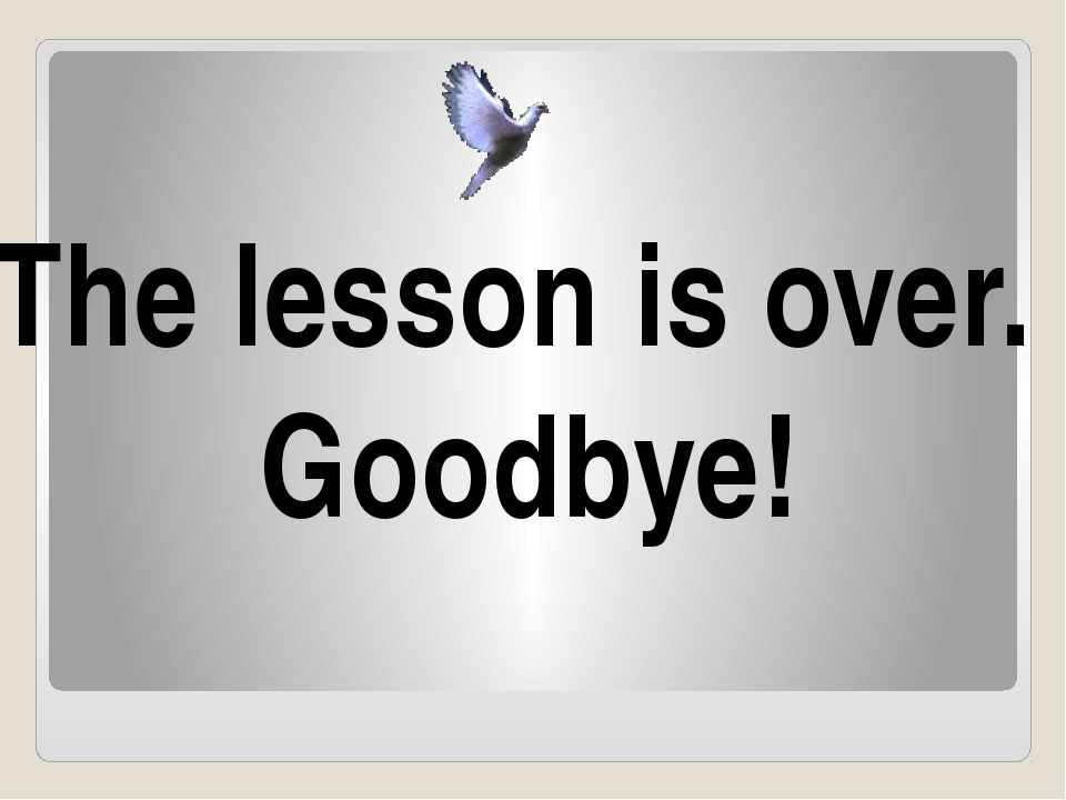 The lesson is over. Goodbye!