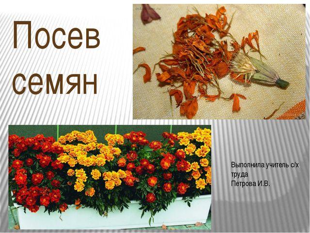 Посев семян Выполнила учитель с/х труда Петрова И.В.